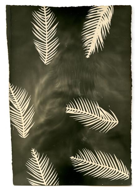 Bruno V. Roels Palmograph #4, 2019 Silver gelatin print 40 x 30 cm 15 3/4 x 11 3/4 in