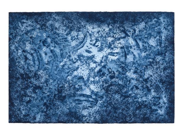 Timo Lieber C-Blue #1, 2018 Unique Cyanotype 117.5 x 167.5 cm 46 1/4 x 66 in