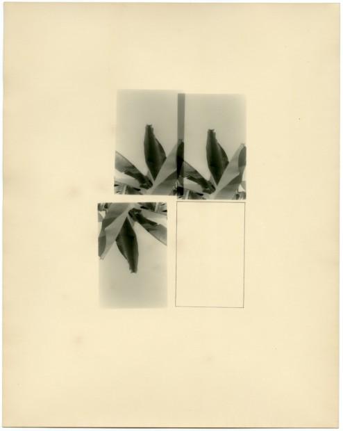 Bruno V. Roels Breaking Promises, 2018 Graphite on overprinted silver gelatin paper 50 x 40 cm 19 3/4 x 15 3/4 in