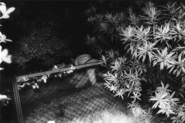 Kohei Yoshiyuki, Untitled, Plate 2, 1971