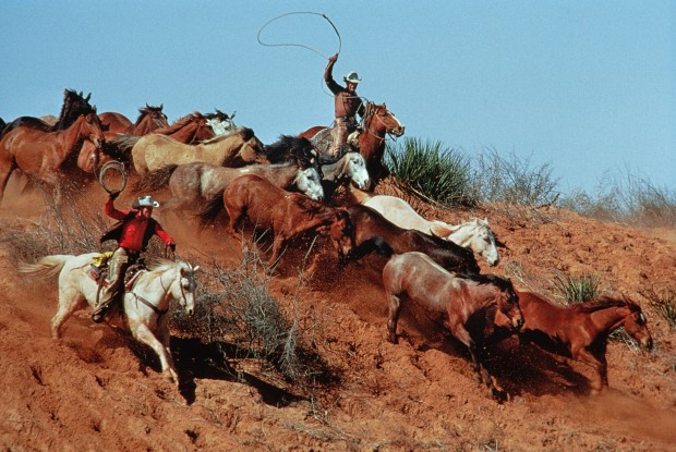 Norm Clasen, Rope and Rush, Seymour, TX, 1986
