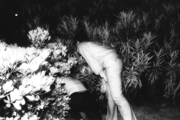 Kohei Yoshiyuki, Untitled, Plate 18, 1971