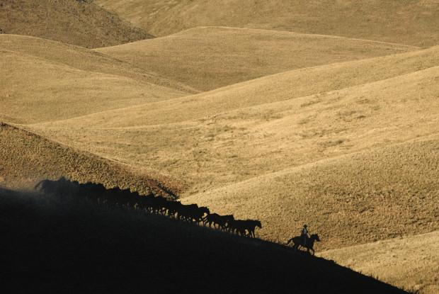 Norm Clasen, Silhouette Ridge, Perma, MT, 1987