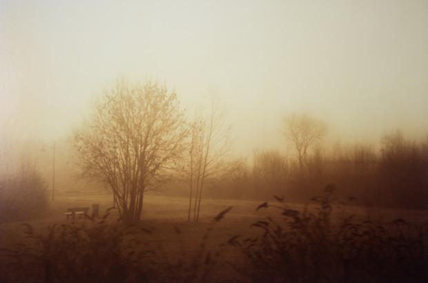 Lionel Gasperini, Fog Field Deauville, 2013
