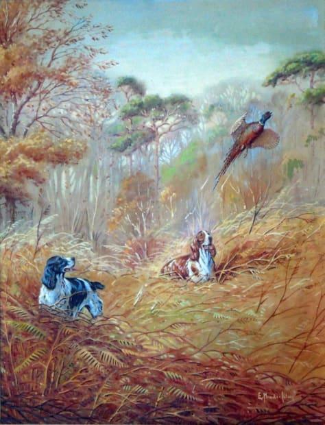 Spaniels putting up a Pheasant
