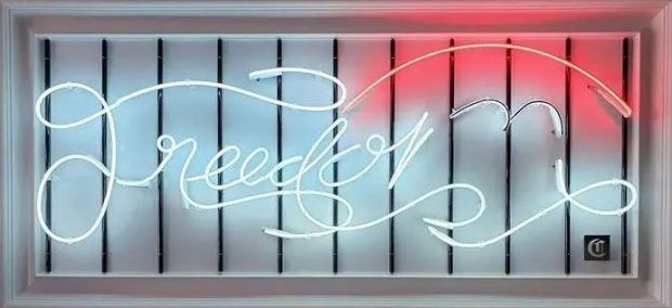 Courty Neon Art, FREEBIRD, 2021