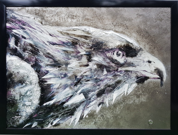 Dan Pearce, Endangered - The Philippine Eagle, 2018