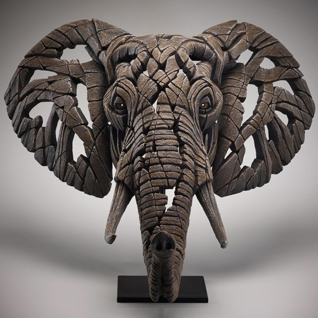 Matt Buckley, Elephant Bust, 2019