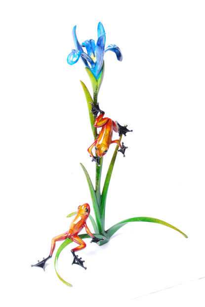 Frogman, Iris - BF148, 2015