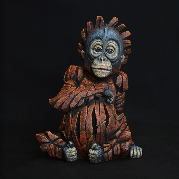 Matt Buckley, Baby Orangutan, 2018