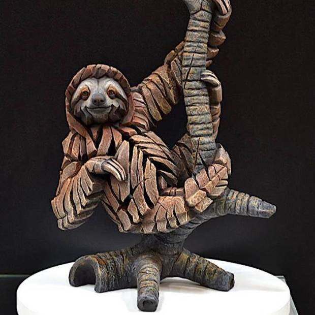 Matt Buckley, Sloth, 2018