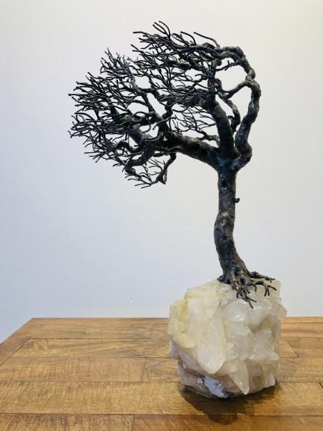 Bill Webb, Rock Crystal Oak