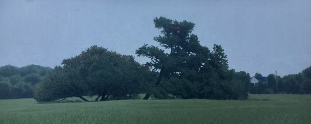 Dennis Blagg, Trees In A Field, 2020