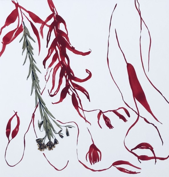 Deborah Mersky, Red Meadow