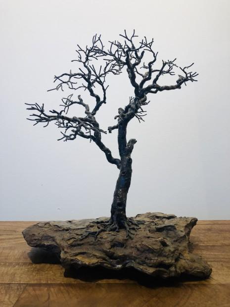 Bill Webb, Water Hole Oak