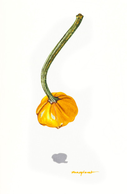 Nancy Lamb, Baby Pumpkin, 2020