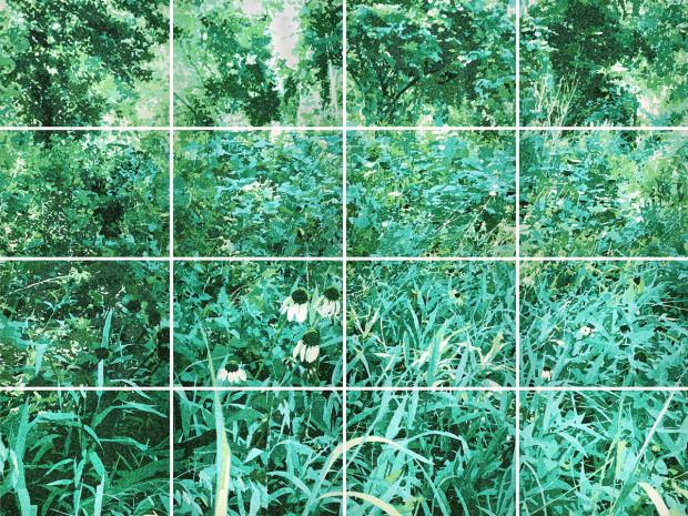 Camille Warmington, Arboretum Groundscape No. 1, 2019