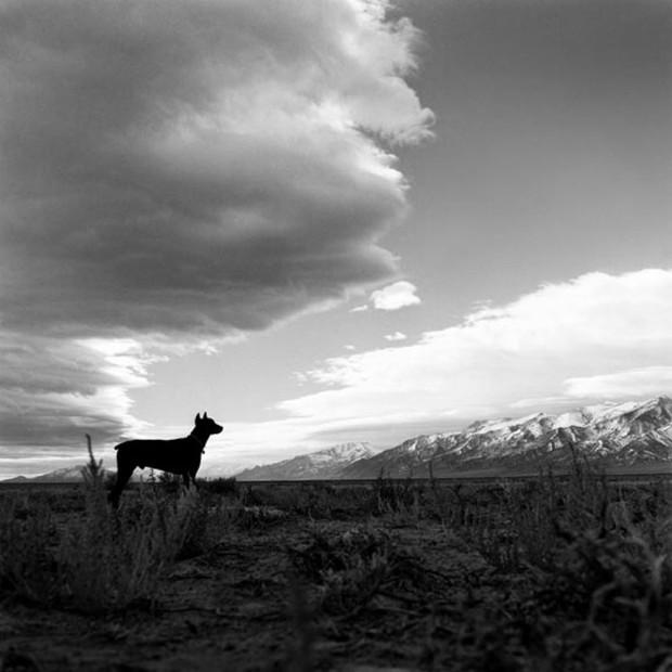 Hunter S. Thompson, Agar's Silhouette, c. 1960s