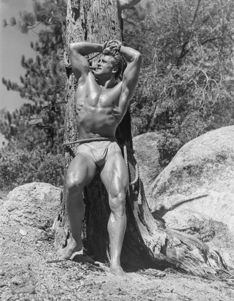 Bob Mizer, Ed Holovchik aka Ed Fury (tree), Southern California, 1951