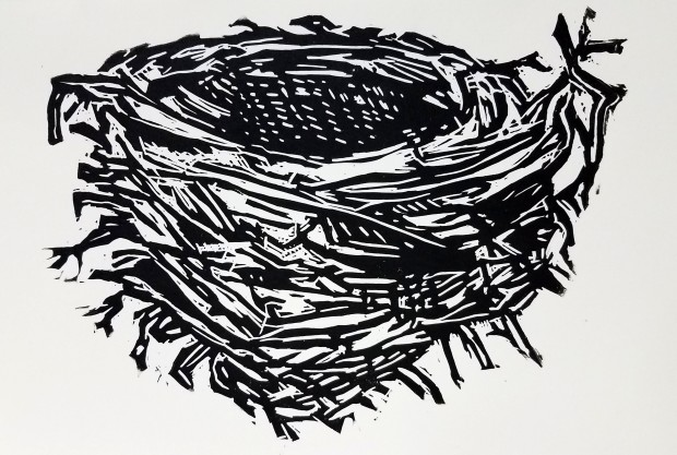 E. Tilly Strauss, Nest, 2017