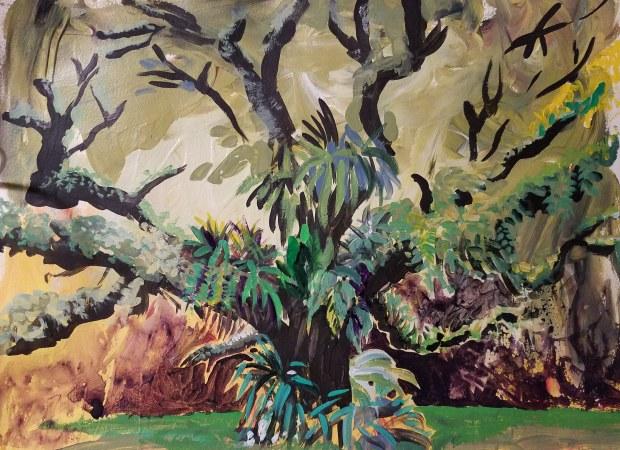 E. Tilly Strauss, Live Oak, 2018