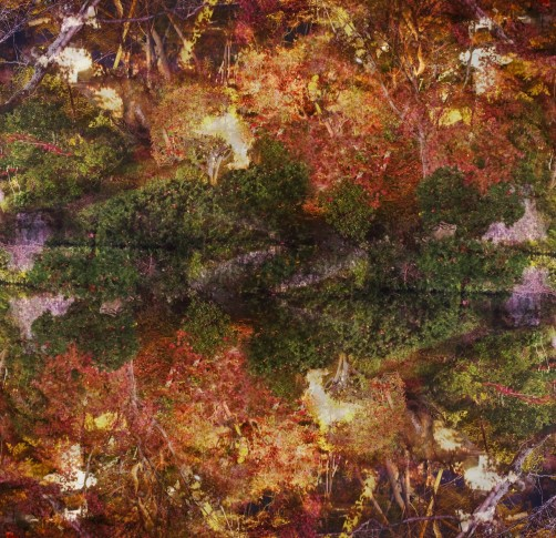 <span class=&#34;artist&#34;><strong>Ori Gersht</strong></span>, <span class=&#34;title&#34;><em>Floating World 03</em>, 2016</span>