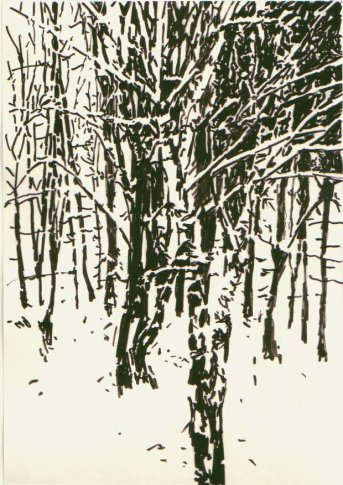<span class=&#34;artist&#34;><strong>Heribert C. Ottersbach</strong></span>, <span class=&#34;title&#34;><em>O.T. (Kleiner Waldspaziergang) Untitled (Small forest walk)</em>, 2007</span>