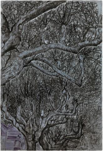 <em>trees</em>, 2016