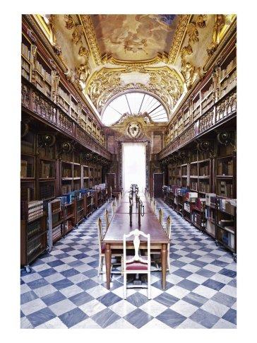 <em>Biblioteca Riccardiana Firenze I 2008</em>