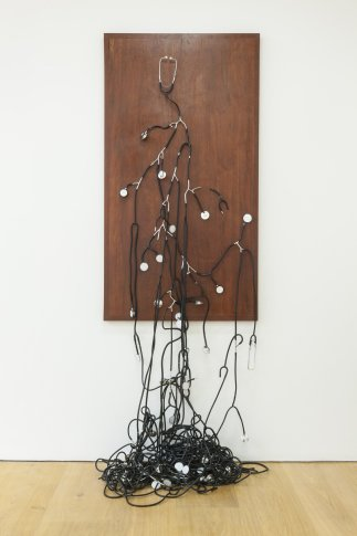 <p><strong>Yoan Capote</strong>&#160;(b. 1977),&#160;<em>Consensus (Sentir Colectivo) / Consensus (Collective Feeling)</em>, 2012-2013</p>
