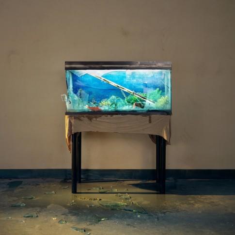 <span class=&#34;artist&#34;><strong>Chen Wei</strong></span>, <span class=&#34;title&#34;><em>Broken Aquarium</em>, 2009</span>