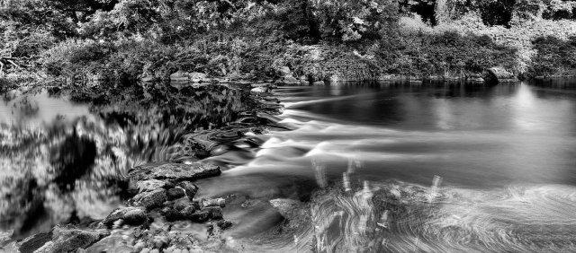 River Slaney, Altamont Gardens 1