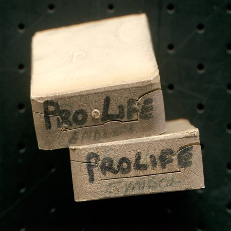 10 weeks, Pro Life Symbol & Emblem