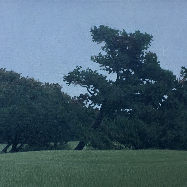 Dennis Blagg, Trees In A Field, 2020