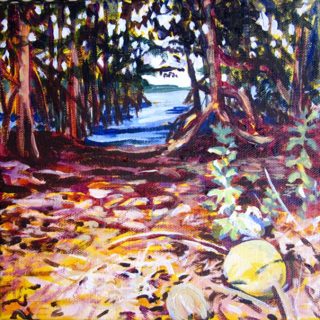 Key Biscayne Mangrove, 2012