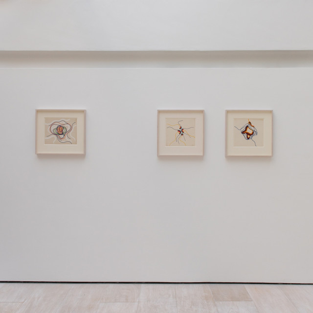 Installation View - Courtesy of Patrick Dodds