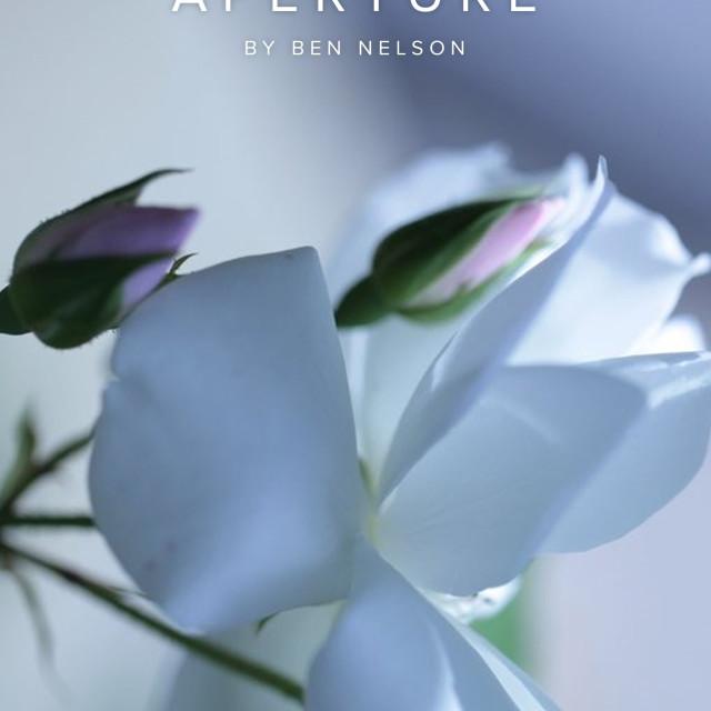Alvarez Review, Noteworthy Works 2013