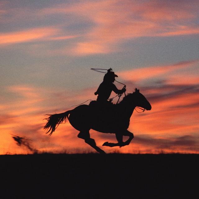 Norm Clasen, Titled (Cowboy)