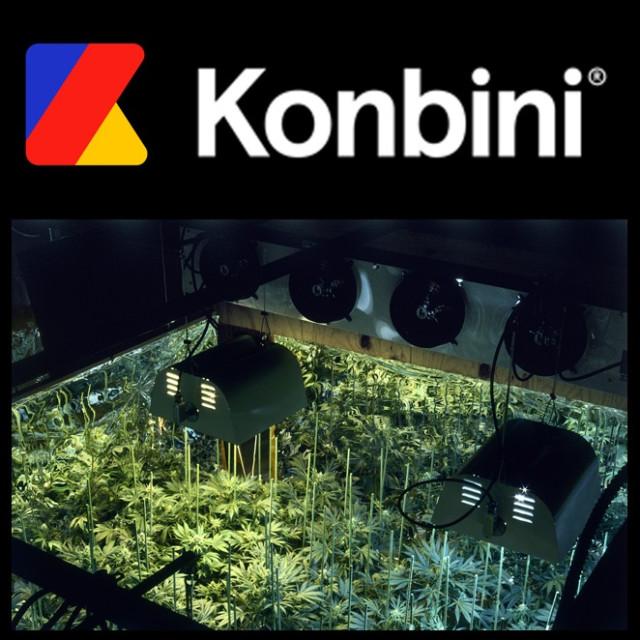Konbibi