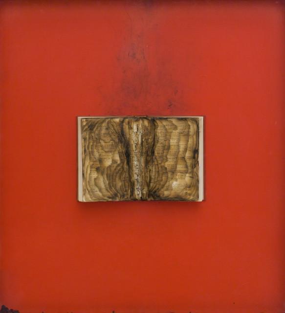 Bernard Aubertin, Livre brulé, 1974