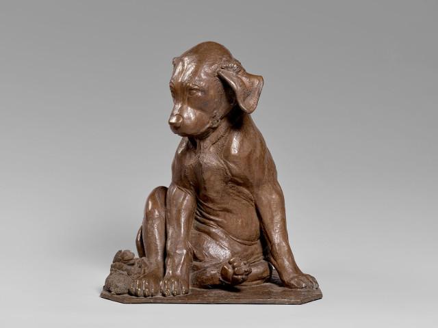 Sirio Tofanari, Bronze Sculpture of a Dog