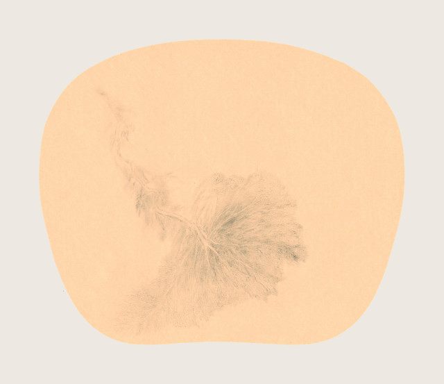 Bingyi 冰逸, Fairy of Rivers 河妖, 2012-2016