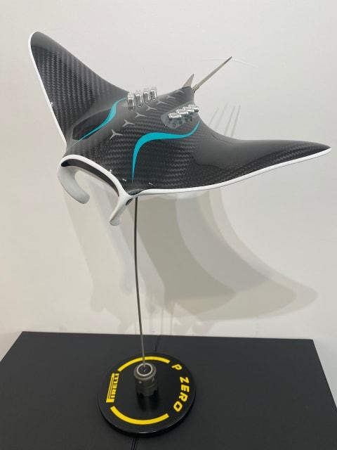 Alastair Gibson - Carbon Art, Petronas M Manta