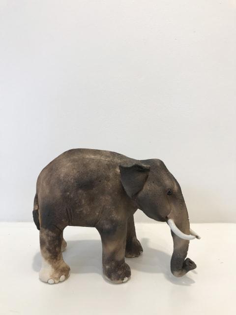 Virginia Dowe Edwards, Small Elephant, 2018