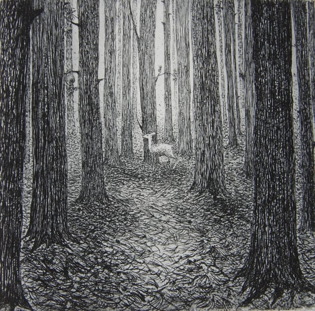 A Forest