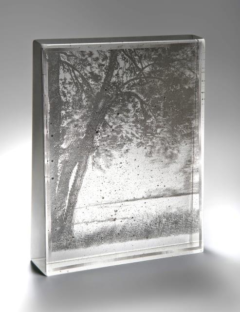 Helen Slater, Virtual Landscape II