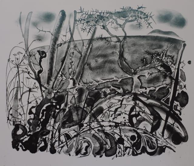 Island Beyond the Dry Thorns