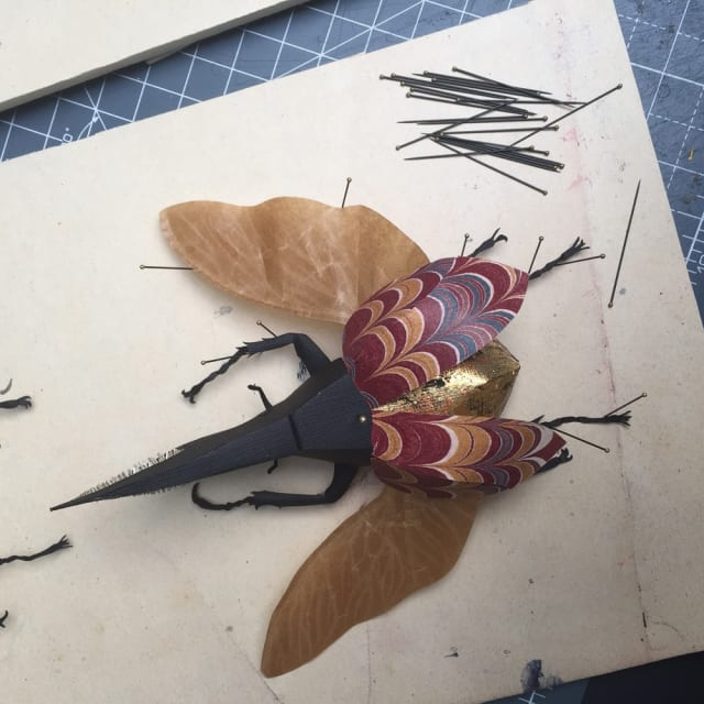 Helen Ward, 'Hercules Beetle', Paper entomology