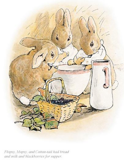 Flopsy, mopsy and Cotton-tail had bread & milk