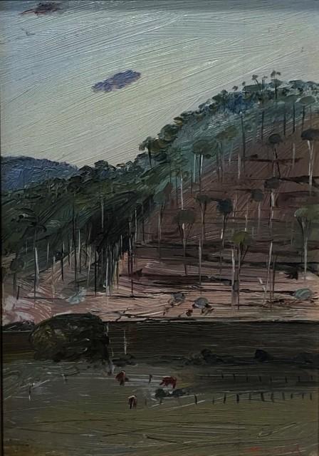 Arthur Boyd, Shoalhaven